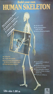 Bouwplaat menselijk skelet